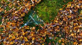 raking-leaves-cpm